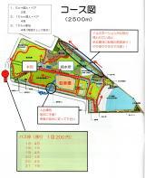 川崎イルミネーションマラソン コース
