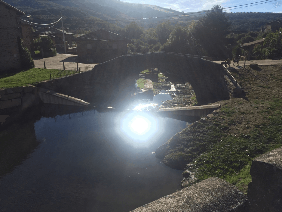 Pineda de la Sierra