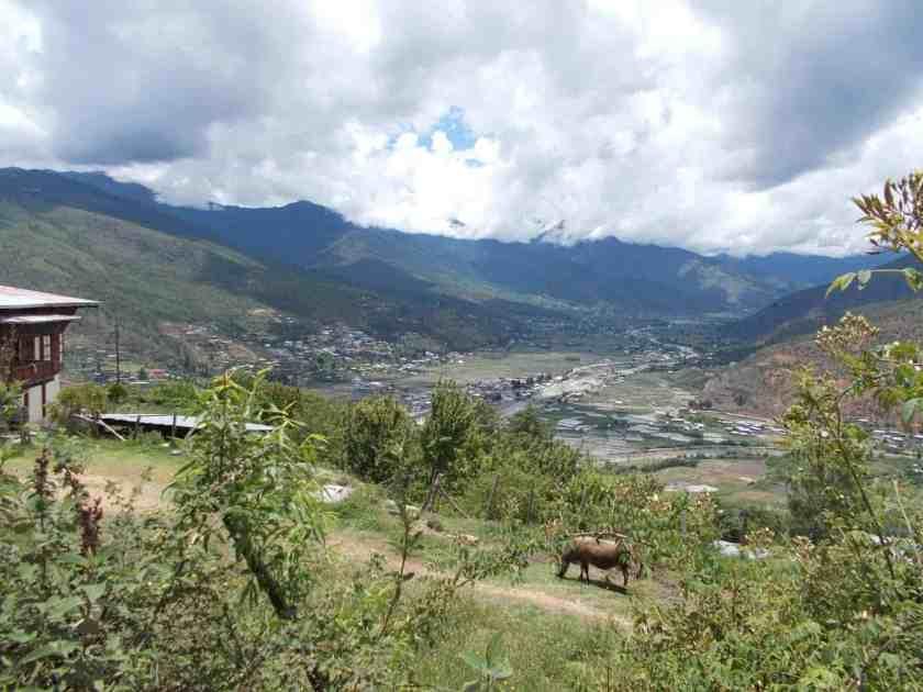 Global Limits Bhutan - The Last Secret - 200km Race Report 51