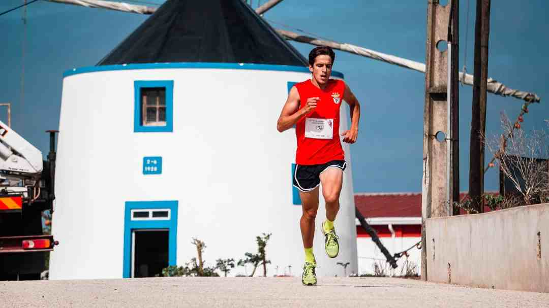 Ultramarathon Training Runs Explained 17