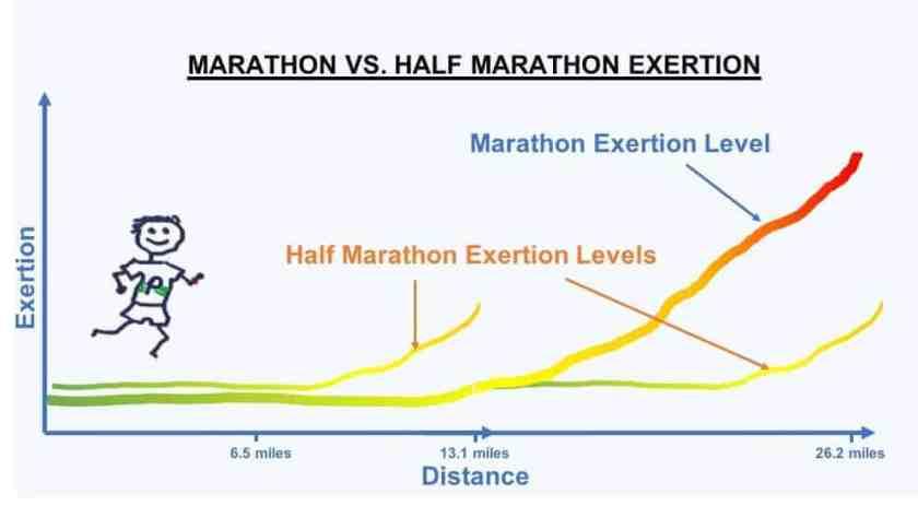 MarathonVsHalf how long is a marathon