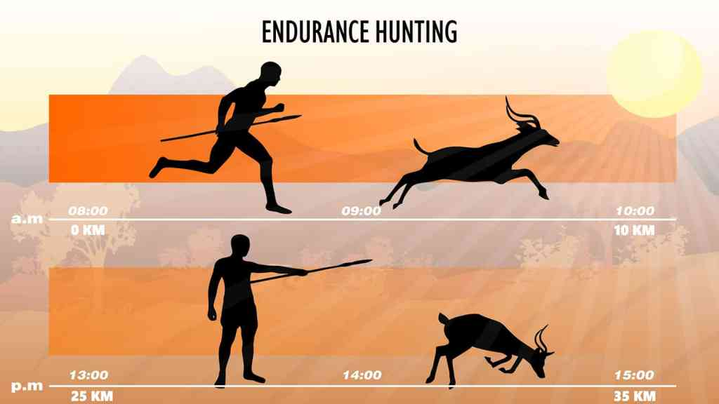 persistence hunting when was running invented