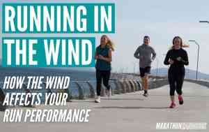 running in the wind guide 1