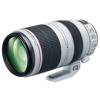Canon 100-400mm f4.5-5.6