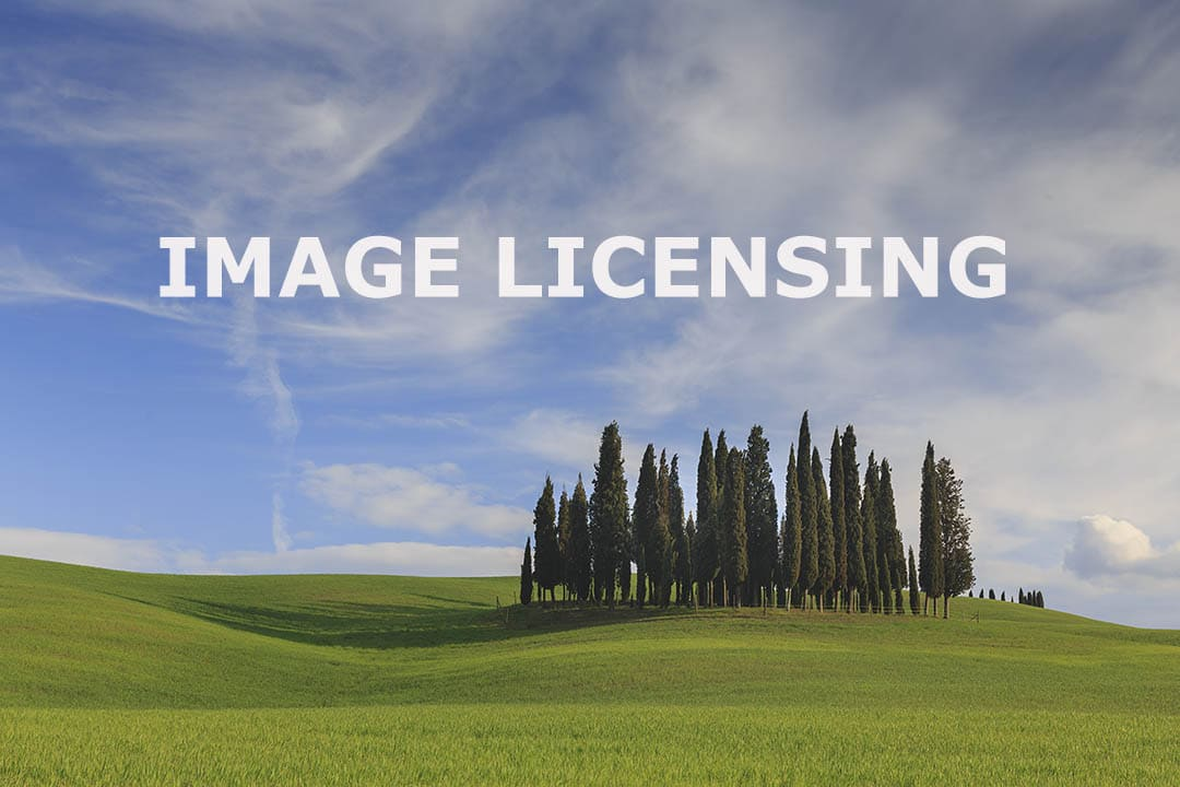 image licensing