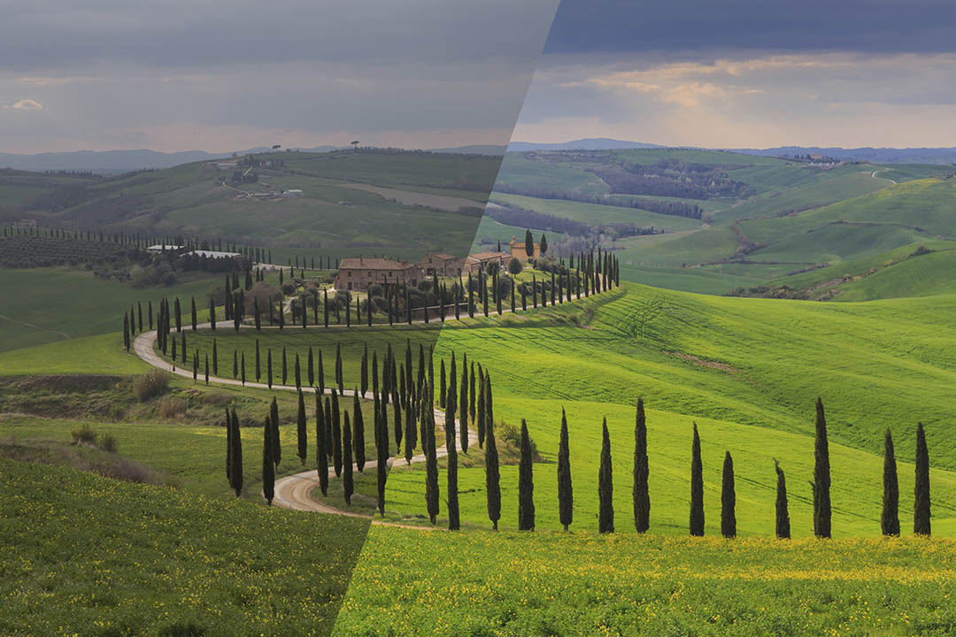 Tuscany Collection 50-3