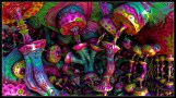 Psychedelic images (59)