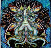 Psychedelic images (65)