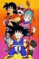 Dragon Ball (143)
