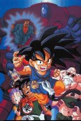 Dragon Ball (75)