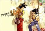 Dragon Ball Crazy Pics (143)