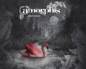 amorphis sw1_1280s