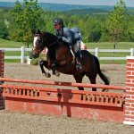 Mickey With Dee - Palgrave