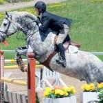 MarBill Hill Farm - Star - Jumping