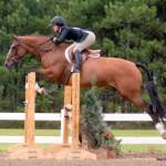 MarBill Hill Farm - Tosca - Jumping