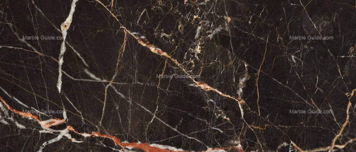 NOIR SAN LAURENT French Marble Guide