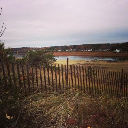 Beach Marsh