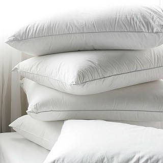 Feather & Down Pillows