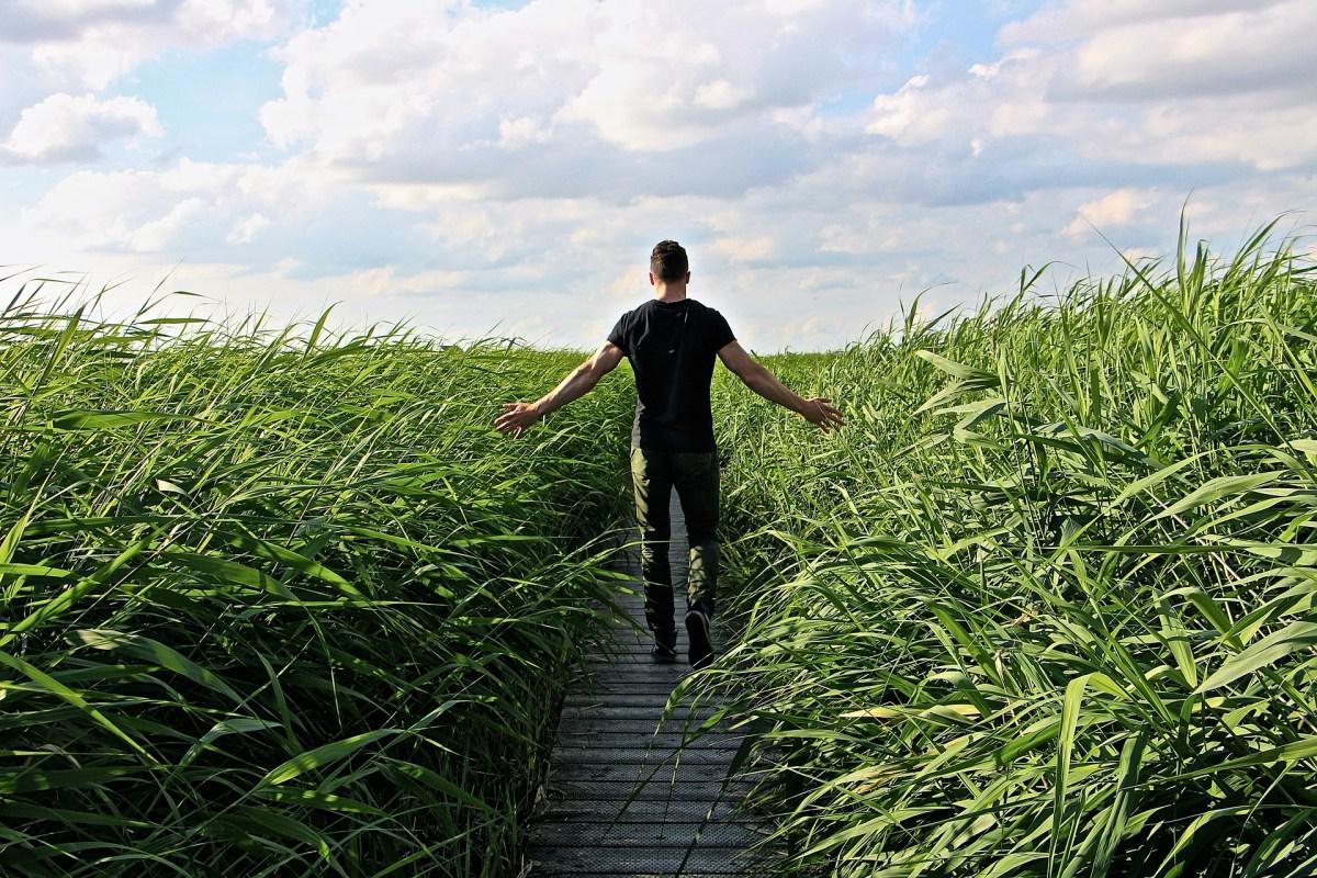 marc-miro-transformacion--liderazgo-desarrollo-personal-coaching-metas-exito-blog-156
