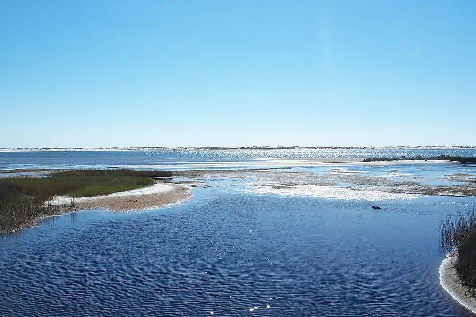 1024px-Pensacola_FL_Big_Lagoon_SP05-9986e187bb