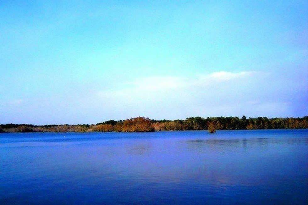 Lake_Talquin-ab27ff9a84