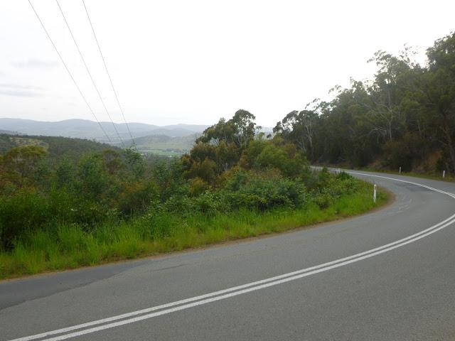 Grasstree Hill
