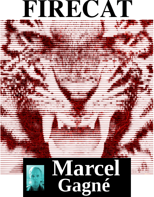 firecat_cover.png