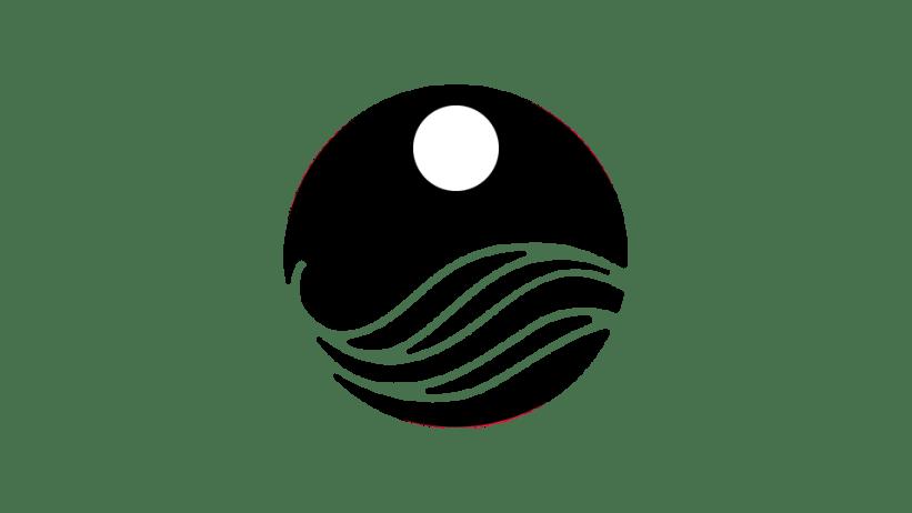LAG-005 (simplificación sólida con disco)