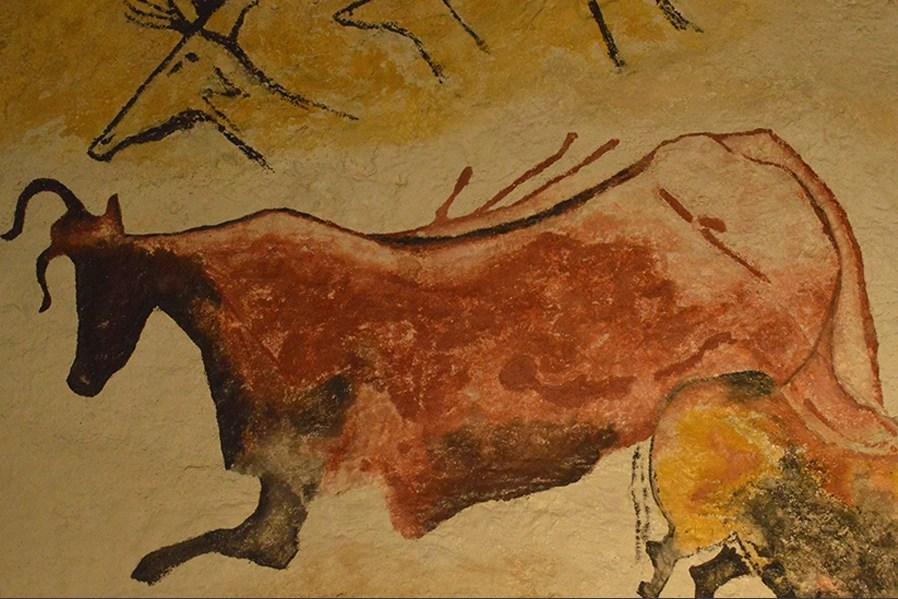 vache-nuit-portfolio-3