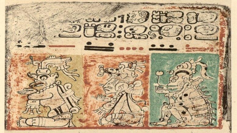 Codex Jolotaxi
