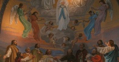 Segunda aparición de Nuestra Señora en Lourdes-Marchando Religión