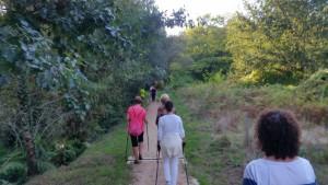nordic_walking_santiago