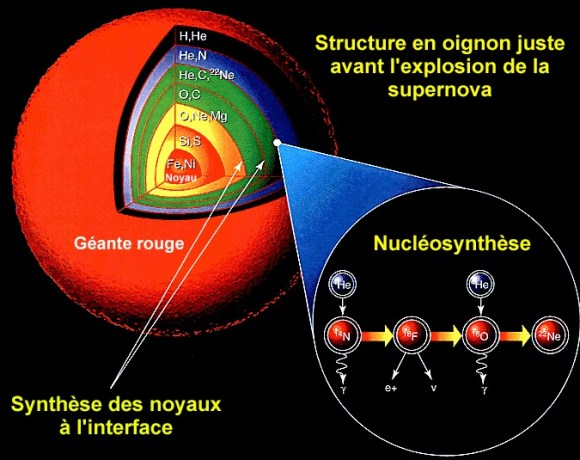 Nucléosynthèse