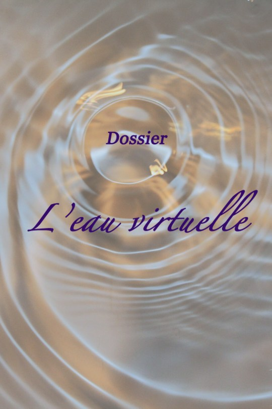 Dossier : l'eau virtuelle