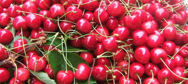 frutta ciliegie
