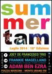 SummerTAM2014