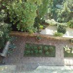Gli Orti Botanici ed i Giardini storici