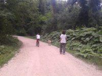 Passeggiata nella natura in compagnia del nostro cane