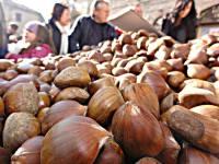 Montemonaco 40° Sagra mercato della Castagna