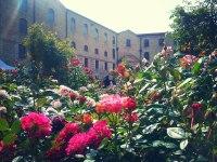 La Mole Vanvitelliana di Ancona torna a fiorire con Ancona Flower Show