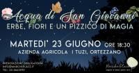 Acqua di San Giovanni: erbe, fiori e un pizzico di magia