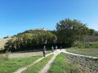 Natura e paesaggio