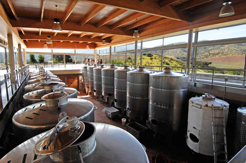 bodega-vinos-matetic-chile