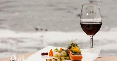 Vinhos Tintos para o Verão