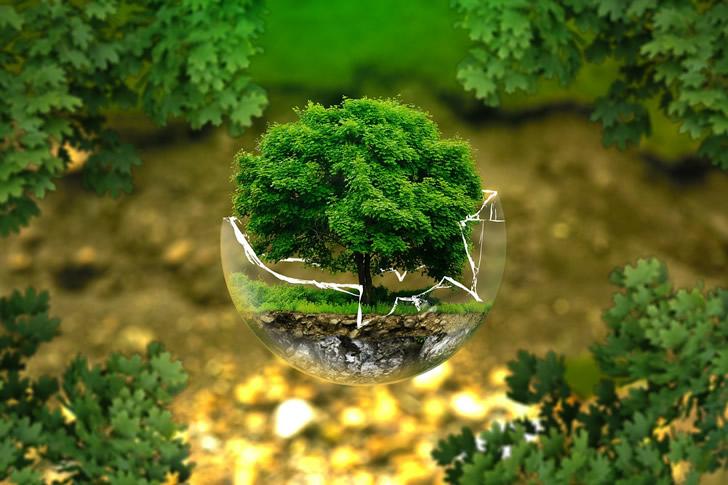 proteccion ambiental