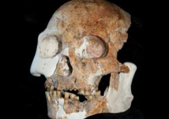 A new Type of Human in Southwest China? (2/2)