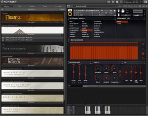 8Dio Aura Studio Percussion 35,77 GB ( Percução ) ( 32 Bits )