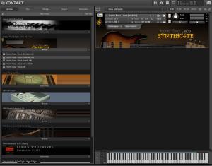 Orange Tree Samples Iconic Bass Jaco 2,91 GB ( Bass )