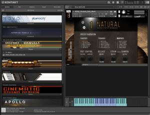 8Dio Instant Ukulele Guitar Bundle 3,34 GB ( Ukulele ) ( 32 Bits )