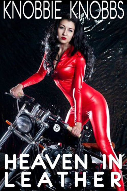 Heaven in Leather Cover